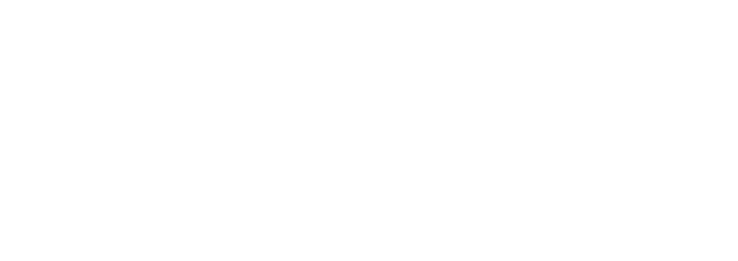 LapCabby White Logo png.png